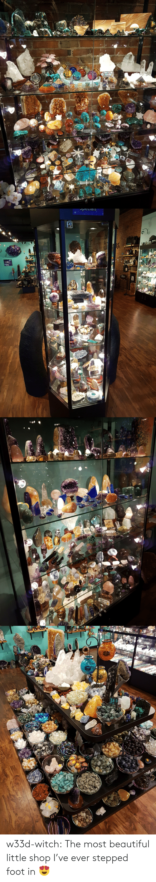 foot: w33d-witch: The most beautiful little shop I've ever stepped foot in 😍