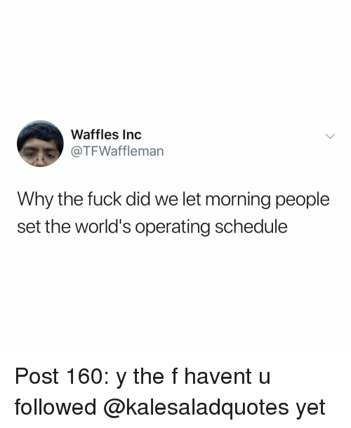 waffles: Waffles Inc  @TFWaffleman  Why the fuck did we let morning people  set the world's operating schedule Post 160: y the f havent u followed @kalesaladquotes yet