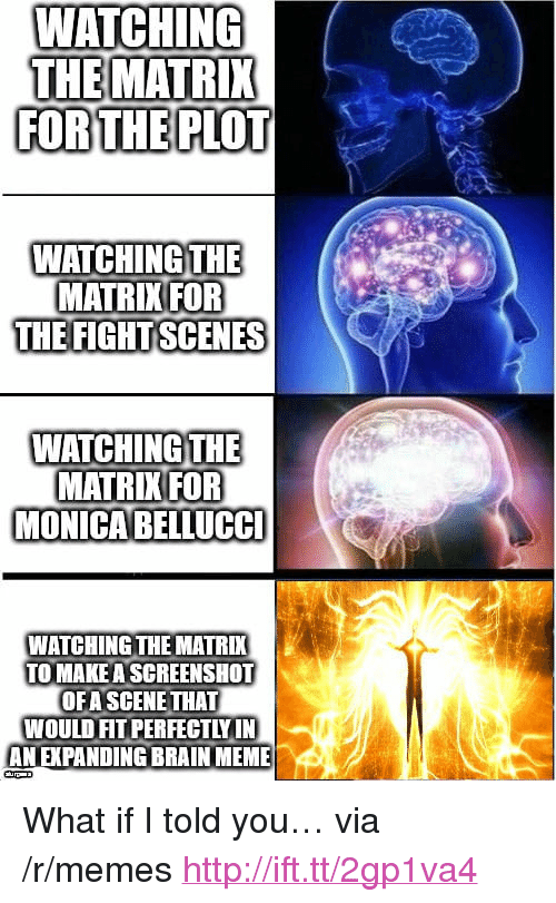 "Meme, Memes, and The Matrix: WAICHING  THE MATRIX  FORTHE PLOT  WATCHING THE  MATRIKIFOR  THE FIGHTSCENES  WATCHING THE  MATRIK FOR  MONICABELLUCC  WATCHING THE MATRI  TO MAKE A SCREENSHOT  OFA SCENE THAT  WOULD FIT PERFECTLY IN  AN EXPANDING BRAIN MEME <p>What if I told you&hellip; via /r/memes <a href=""http://ift.tt/2gp1va4"">http://ift.tt/2gp1va4</a></p>"