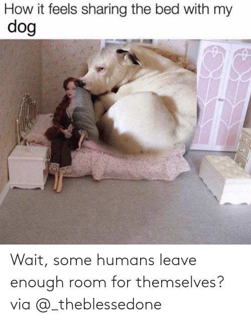 humans: Wait, some humans leave enough room for themselves?via @_theblessedone