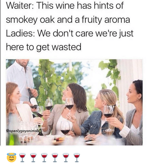 aroma: Waiter: This wine has hints of  smokey oak and a fruity aroma  Ladies: We don't care we're just  here to get wasted  @openlygayanimal 😇🍷🍷🍷🍷🍷🍷