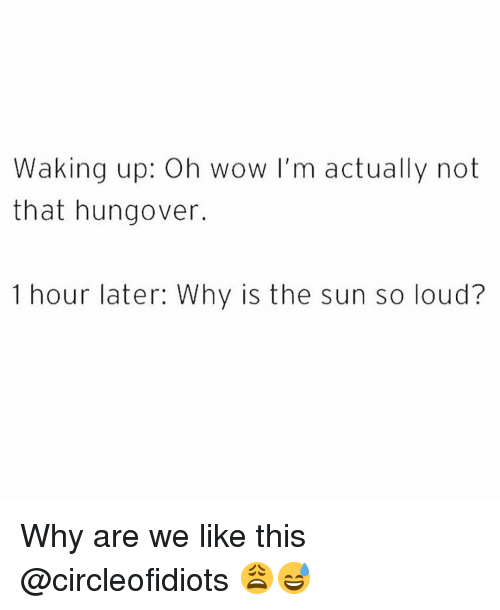 Funny, Wow, and Sun: Waking up: Oh wow I'm actually not  that hungover.  1 hour later: Why is the sun so loud? Why are we like this @circleofidiots 😩😅