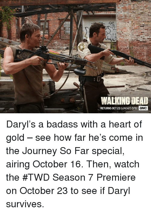 Walking Dead Returns: WALKING DEAD  RETURNS OCT23 SUNDAYS 9/86  aMC Daryl's a badass with a heart of gold – see how far he's come in the Journey So Far special, airing October 16.    Then, watch the #TWD Season 7 Premiere on October 23 to see if Daryl survives.