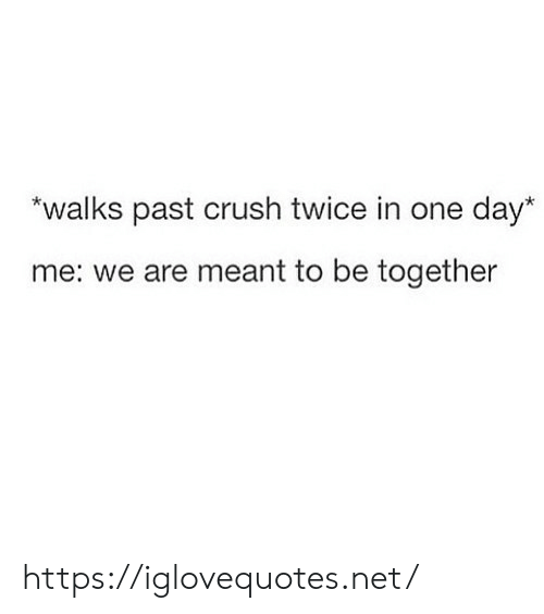 Crush, Net, and One: walks past crush twice in one day  me: we are meant to be together https://iglovequotes.net/