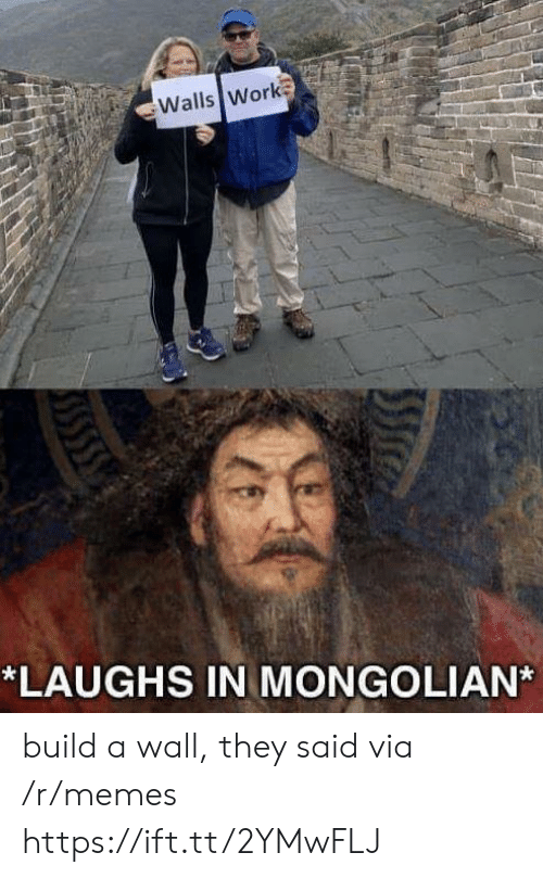 Memes, Work, and Via: Walls Work  *LAUGHS IN MONGOLIAN build a wall, they said via /r/memes https://ift.tt/2YMwFLJ
