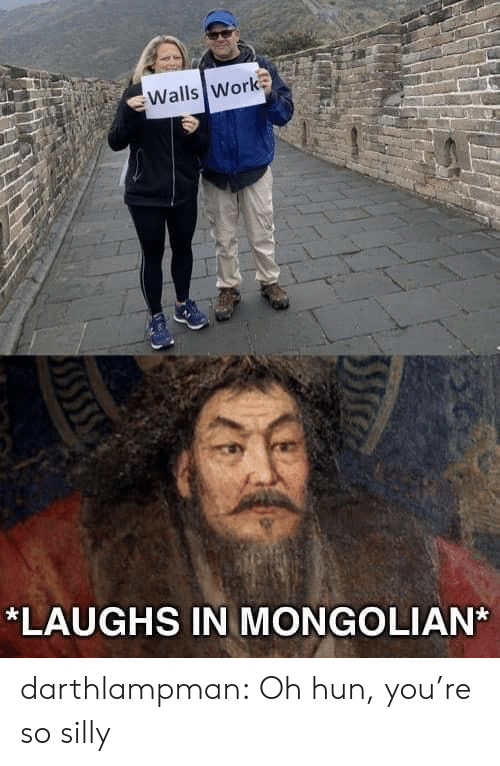 Tumblr, Work, and Blog: Walls Work  *LAUGHS IN MONGOLIAN darthlampman:  Oh hun, you're so silly