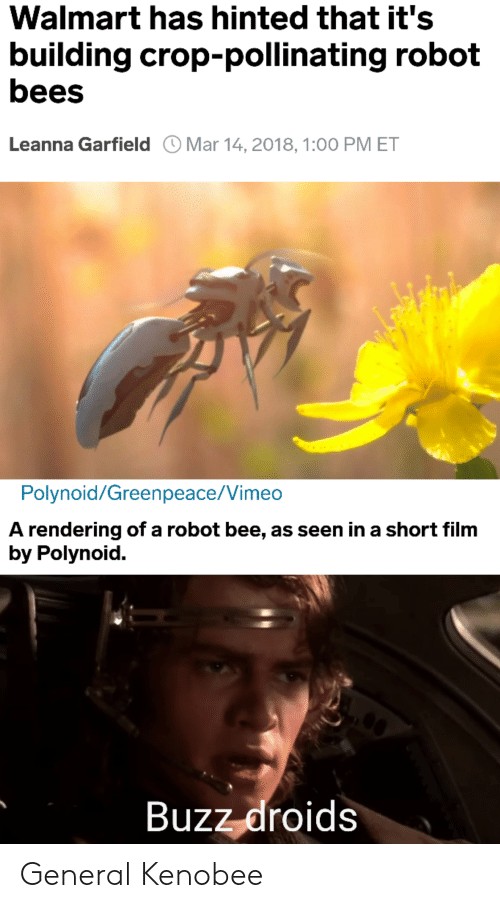 vimeo: Walmart has hinted that it's  building crop-pollinating robot  bees  Leanna Garfield Mar 14,2018, 1:00 PM ET  Polynoid/Greenpeace/Vimeo  A rendering of a robot bee, as seen in a short film  by Polynoid.  Buzz-droids General Kenobee