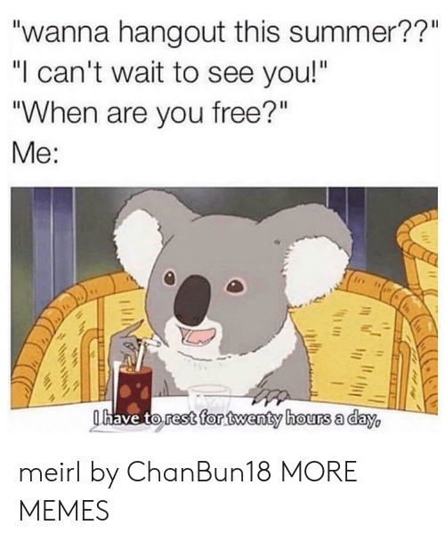 """Dank, Memes, and Target: """"wanna hangout this summer??""""  """"I can't wait to see you!""""  """"When are you free?""""  Me:  Ohave to rest for twenty hours a day, meirl by ChanBun18 MORE MEMES"""