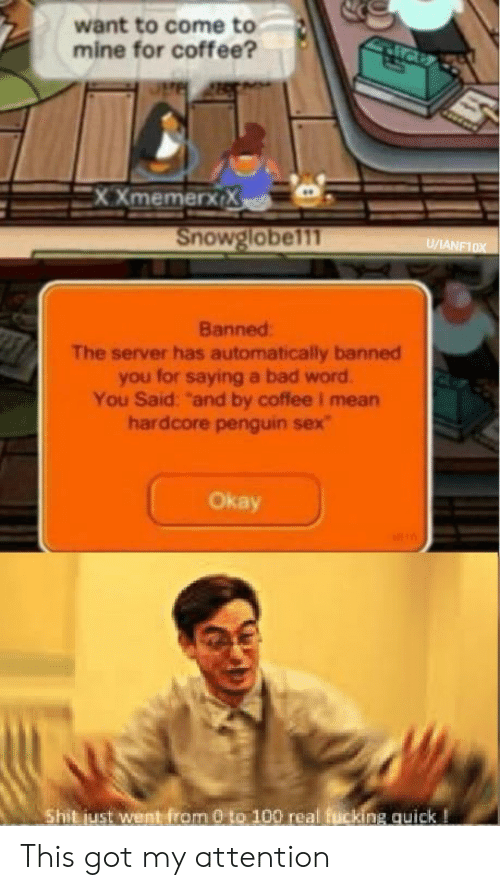 "Banned: want to come to  mine for coffee?  XXmemerx X  Snowglobel11  U/ANF10X  Banned  The server has automatically banned  you for saying a bad word  You Said: ""and by coffee I mean  hardcore penguin sex  Okay  Shit just went from 0 to 100 real fucking quick! This got my attention"