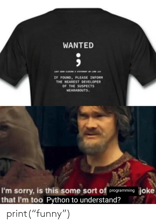 "Funny, Sorry, and Programming: WANTED  IF FOUND, PLEASE INFORM  THE NEAREST DEVELOPER  OF THE SUSPECTS  WEARABOUTS.  I'm sorry, is this some sort of programming joke  that I'm too Python to understand? print(""funny"")"