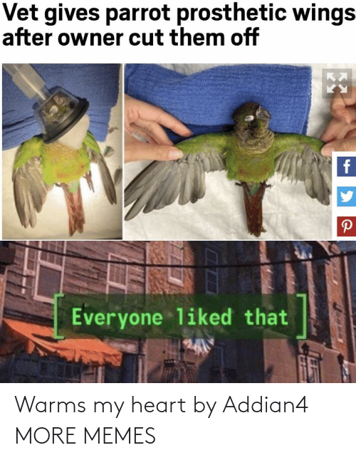 my heart: Warms my heart by Addian4 MORE MEMES