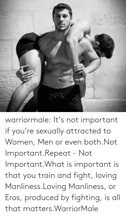 Sexually: warriormale:  It's not important if you're sexually attracted to Women, Men or even both.Not Important.Repeat - Not Important.What is important is that you train and fight, loving Manliness.Loving Manliness, or Eros, produced by fighting, is all that matters.WarriorMale