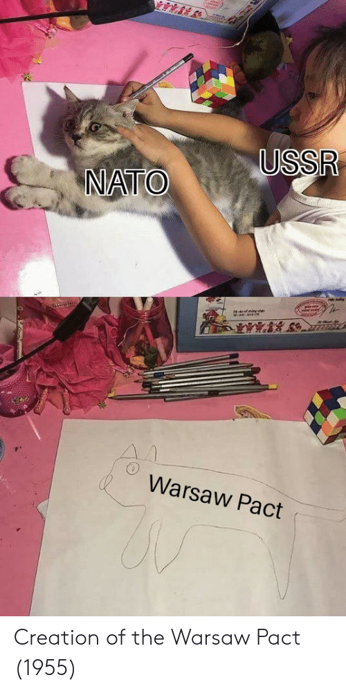Creation, Warsaw, and Warsaw Pact: Warsaw Pact Creation of the Warsaw Pact (1955)