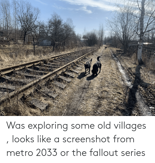 metro 2033: Was exploring some old villages , looks like a screenshot from metro 2033 or the fallout series