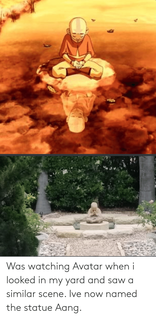 scene: Was watching Avatar when i looked in my yard and saw a similar scene. Ive now named the statue Aang.