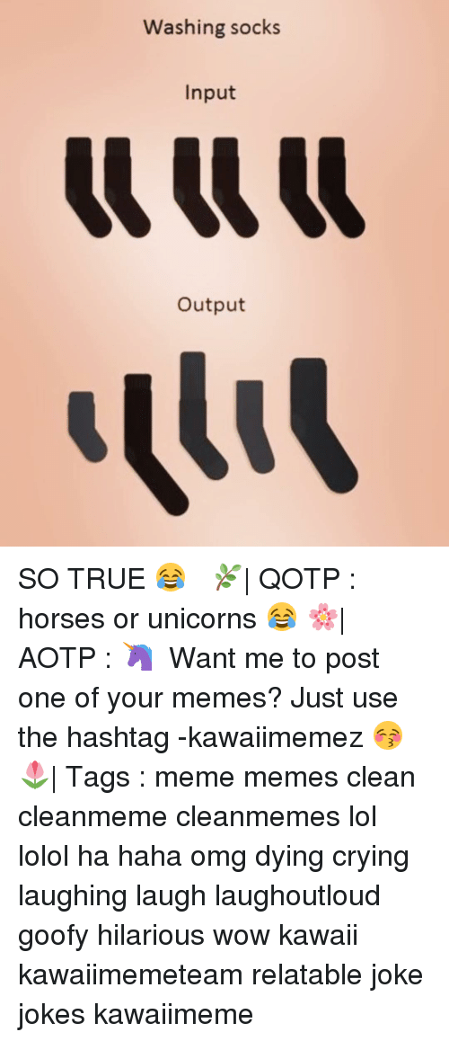 laughing. laugh: Washing socks  Input  Output SO TRUE 😂 ✿ 🌿| QOTP : horses or unicorns 😂 🌸| AOTP : 🦄 ✿ Want me to post one of your memes? Just use the hashtag -kawaiimemez 😚 ✿ 🌷| Tags : meme memes clean cleanmeme cleanmemes lol lolol ha haha omg dying crying laughing laugh laughoutloud goofy hilarious wow kawaii kawaiimemeteam relatable joke jokes kawaiimeme