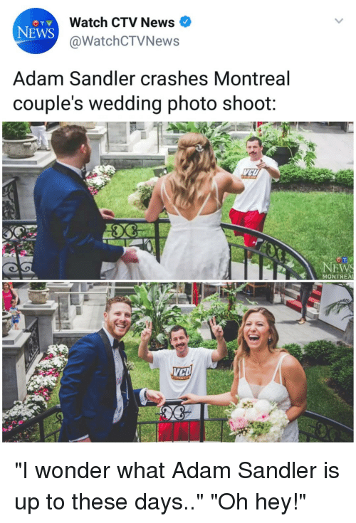 "Adam Sandler, Memes, and News: Watch CTV News  @WatchCTVNews  NEWS  Adam Sandler crashes Montreal  couple's wedding photo shoot:  NEW  MONTREA ""I wonder what Adam Sandler is up to these days.."" ""Oh hey!"""