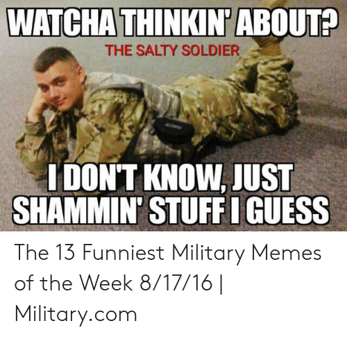 Funny Army Memes: WATCHA THINK  N'ABOUT?  THE SALTY SOLDIER  IDON'T KNOW,JUST  SHAMMIN' STUFF I GUESS The 13 Funniest Military Memes of the Week 8/17/16 | Military.com