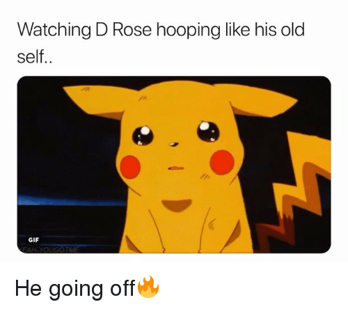 Basketball, Gif, and Nba: Watching D Rose hooping like his old  self..  GIF He going off🔥