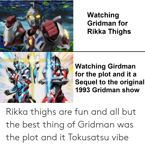 Rikka: Watching  Gridman for  Rikka Thighs  Watching Girdman  for the plot and it a  Sequel to the original  1993 Gridman show Rikka thighs are fun and all but the best thing of Gridman was the plot and it Tokusatsu vibe