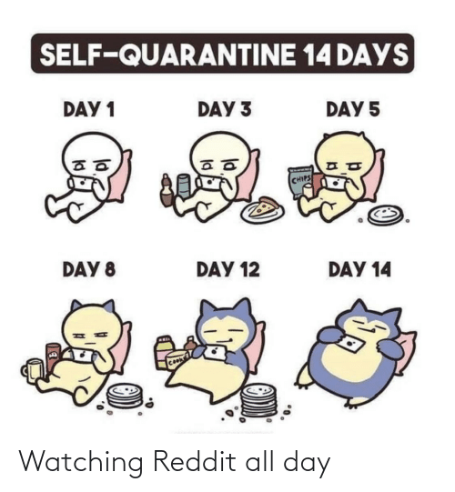 reddit all: Watching Reddit all day