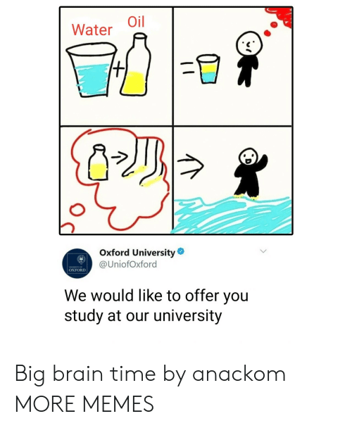 Dank, Memes, and Target: Water Oil  Oxford University  @UniofOxford  OXFORD  We would like to offer you  study at our university Big brain time by anackom MORE MEMES