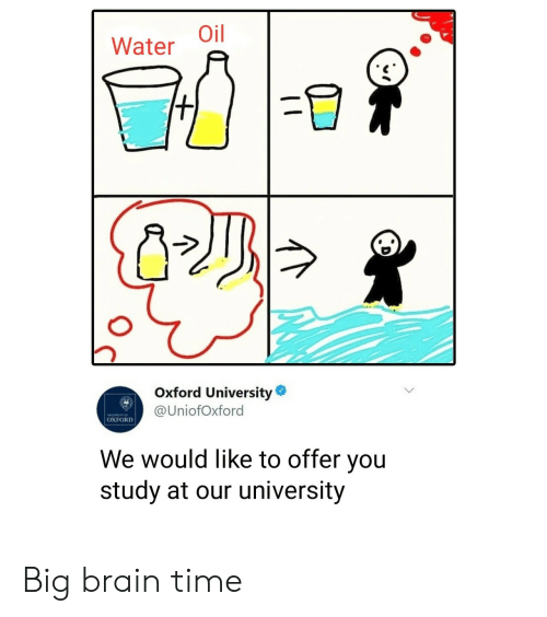Brain, Time, and Water: Water Oil  Oxford University  @UniofOxford  OXFORD  We would like to offer you  study at our university Big brain time