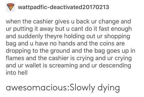no hands: wattpadfic-deactivated20170213  when the cashier gives u back ur change and  ur putting it away but u cant do it fast enough  and suddenly theyre holding out ur shopping  bag and u have no hands and the coins are  dropping to the ground and the bag goes up in  flames and the cashier is crying and ur crying  and ur wallet is screaming and ur descending  into hell awesomacious:Slowly dying