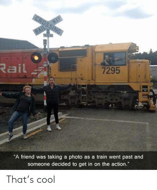 "Get In: WAY  CROSSING  RAIL  Rail  7295  ""A friend was taking a photo as a train went past and  someone decided to get in on the action."" That's cool"