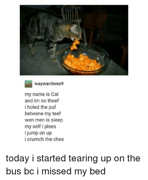 Teared Up: waywardwes9  my name is Cat  and im no theef  i holed the puf  betwene my teef  wen men is sleep  my self i plees  i jump on up  i crumch the ches today i started tearing up on the bus bc i missed my bed
