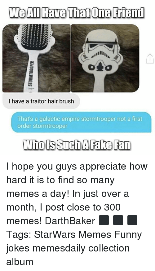 funny jokes: We All Have That One Friend  I have a traitor hair brush  That's a galactic empire stormtrooper not a first  order stormtrooper  Who ls Such AFake Fan I hope you guys appreciate how hard it is to find so many memes a day! In just over a month, I post close to 300 memes! DarthBaker ⬛ ⬛ ⬛ Tags: StarWars Memes Funny jokes memesdaily collection album