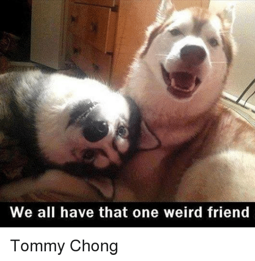Tommy Chong: We all have that one weird friend Tommy Chong