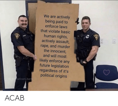assault: We are actively  being paid to  enforce laws  that violate basic  human rights,  actively assault,  rape, and murder  the innocent,  and will most  likely enforce any  future legislation  regardless of it's  political origins  IG AmericanLiberty ACAB