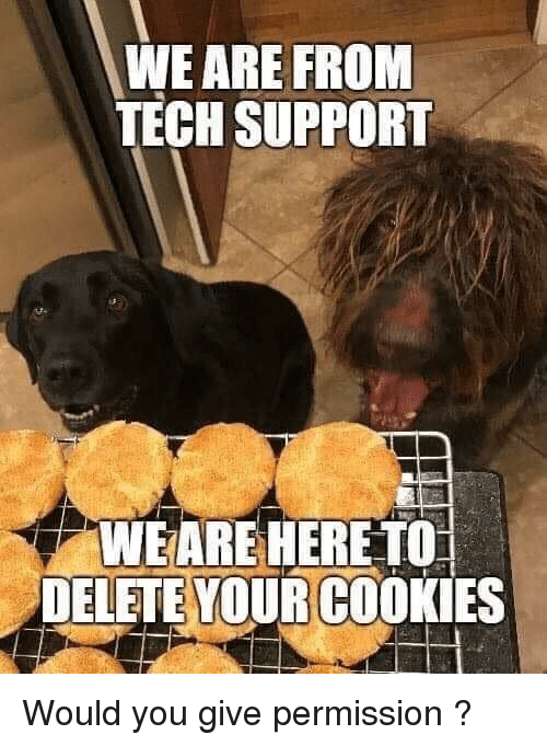 Tech Support: WE ARE FROM  TECH SUPPORT  WEARE HERE TO  DELETE YOUR COOKIES Would you give permission ?