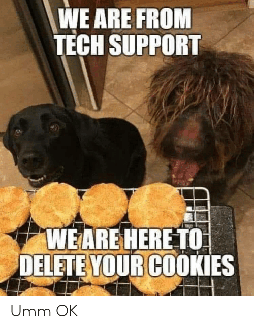 Tech Support: WE ARE FROM  TECH SUPPORT  WEARE HERE TO  DELETE YOUR COOKIES Umm OK