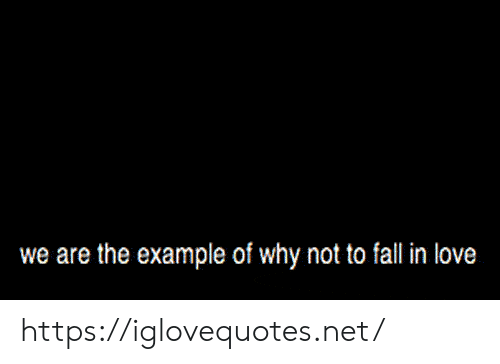Example Of: we are the example of why not to fall in love https://iglovequotes.net/