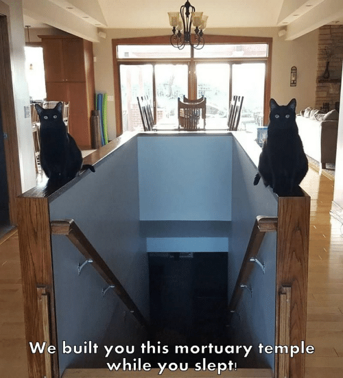 You, This, and Slept: We built you this mortuary temple  while you slept  HEH