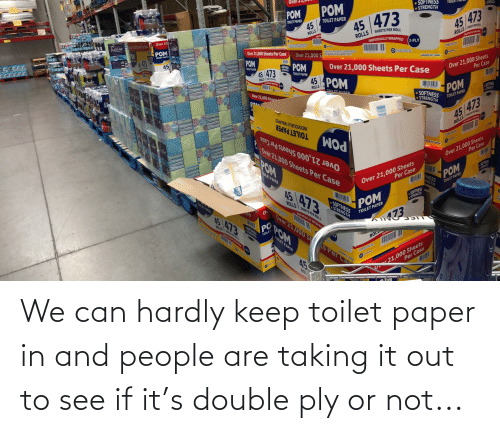toilet: We can hardly keep toilet paper in and people are taking it out to see if it's double ply or not...