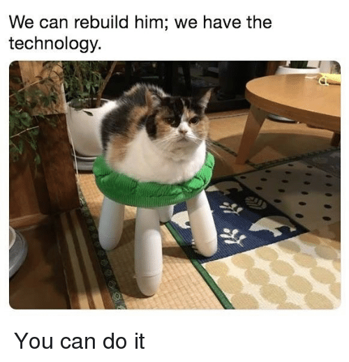 Technology, Dank Memes, and Him: We can rebuild him; we have the  technology. You can do it