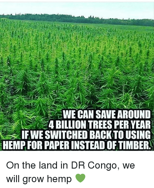 Timbers: WE CAN SAVE AROUND  4 BILLION TREES PERYEAR  IFWE SWITCHED BACK TO USING  HEMPFOR PAPERINSTEAD OF TIMBER. On the land in DR Congo, we will grow hemp 💚