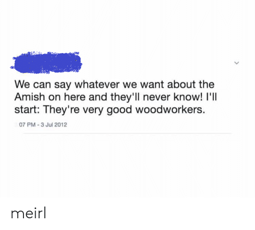 Good, Never, and MeIRL: We can say whatever we want about the  Amish on here and they'll never know! I'll  start: They're very good woodworkers.  07 PM-3 Jul 2012 meirl