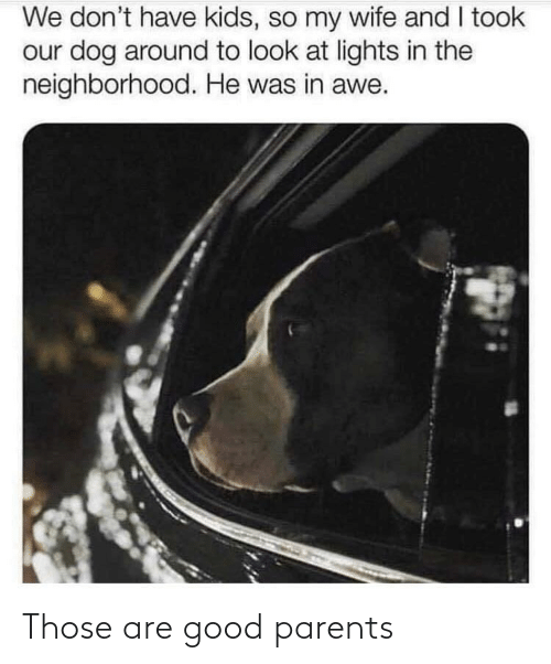 Have Kids: We don't have kids, so my wife and I took  our dog around to look at lights in the  neighborhood. He was in awe. Those are good parents