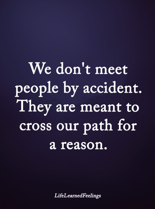 Memes, Cross, and Reason: We don't meet  people by accident.  They are meant to  cross our path for  a reason.  LifeLearnedFeelings
