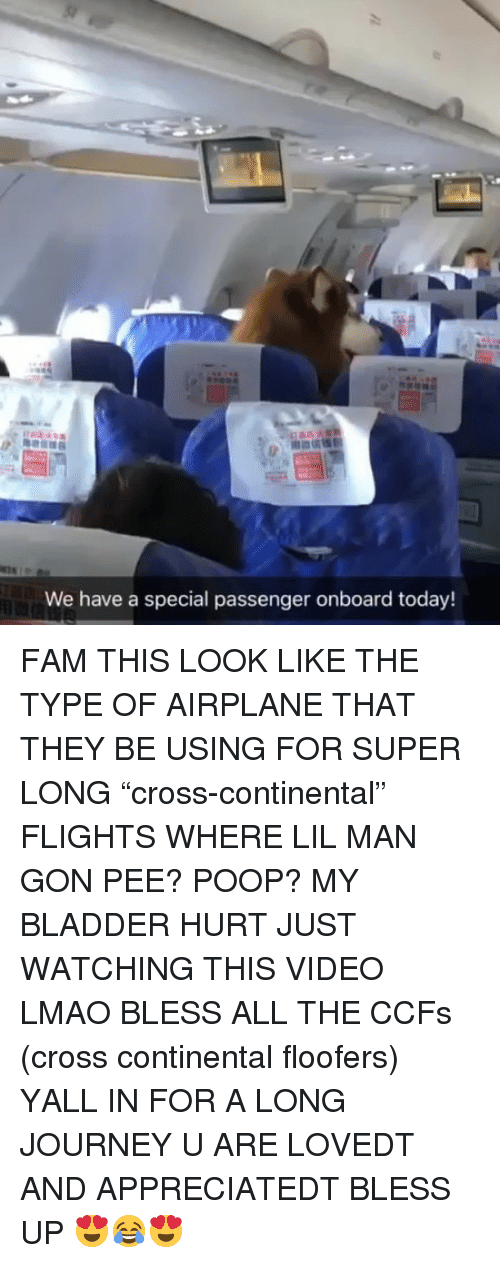 """Bless up: We have a special passenger onboard today! FAM THIS LOOK LIKE THE TYPE OF AIRPLANE THAT THEY BE USING FOR SUPER LONG """"cross-continental"""" FLIGHTS WHERE LIL MAN GON PEE? POOP? MY BLADDER HURT JUST WATCHING THIS VIDEO LMAO BLESS ALL THE CCFs (cross continental floofers) YALL IN FOR A LONG JOURNEY U ARE LOVEDT AND APPRECIATEDT BLESS UP 😍😂😍"""