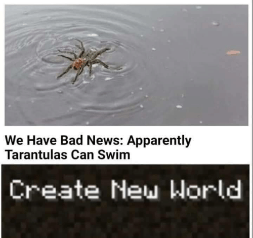 Bad News: We Have Bad News: Apparently  Tarantulas Can Swim  Create New World