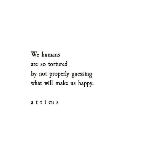 Happy, Will, and Make: We humans  are so tortured  by not properly guessing  what will make us happy  a t t i cu s