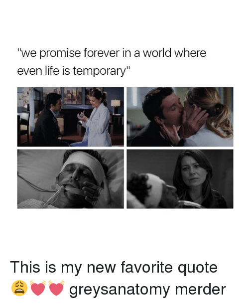 "foreverly: ""we promise forever in a world where  even life is temporary"" This is my new favorite quote 😩💓💓 greysanatomy merder"