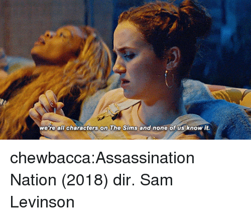 Assassination: we re all characters on The Sims and none of us know it. chewbacca:Assassination Nation (2018) dir. Sam Levinson
