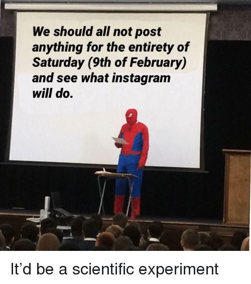 Entirety: We should all not post  anything for the entirety of  Saturday (9th of February)  and see what instagram  will do. It'd be a scientific experiment