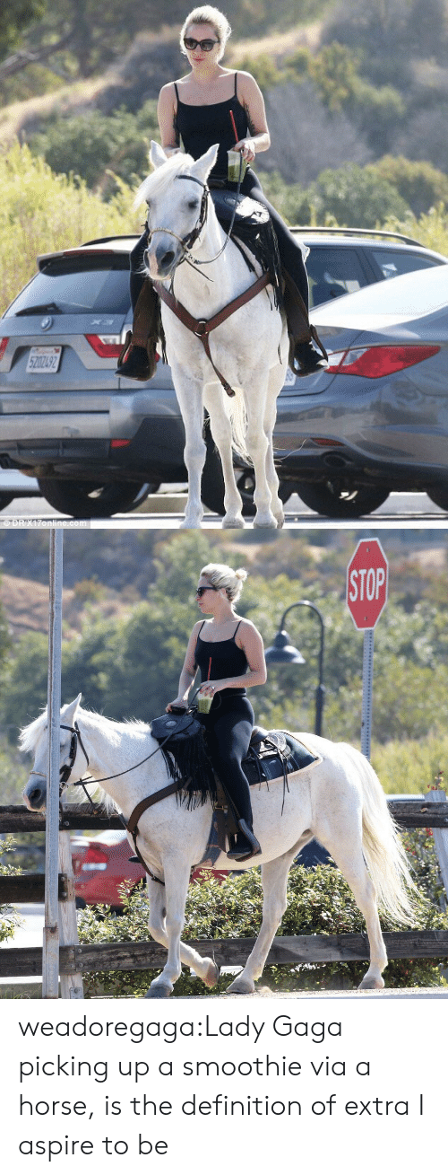 Lady Gaga, Target, and Tumblr: weadoregaga:Lady Gaga picking up a smoothie via a horse, is the definition of extra I aspire to be